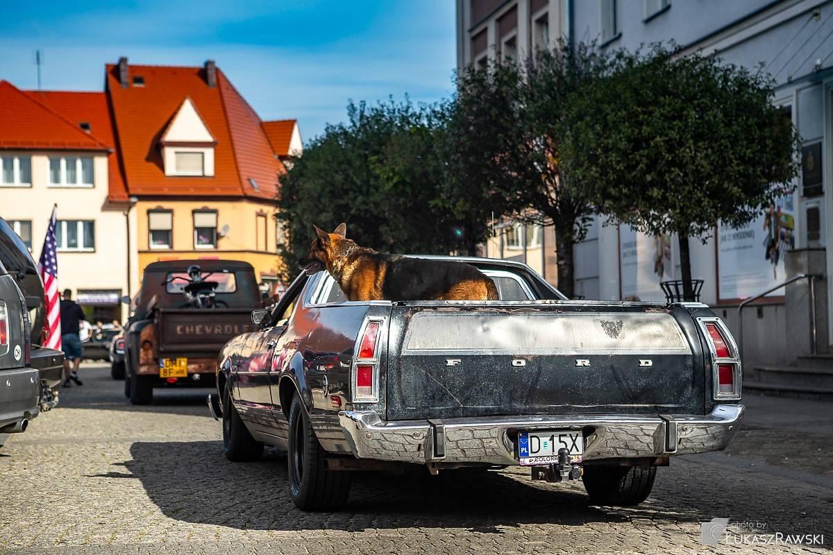 Trzeci Kroto Am Car