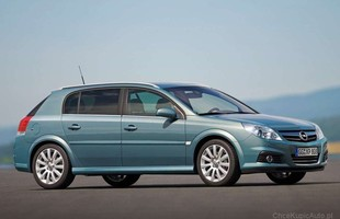 Opel Signum - tanio i dobrze